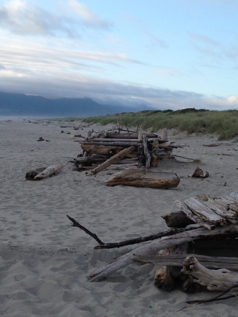 A driftwood fort on the sand
