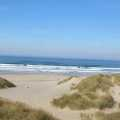 public beach access at Nehalem state park