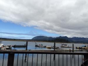 tsunami bar and grill view
